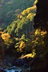 Hatonosu gorge 1