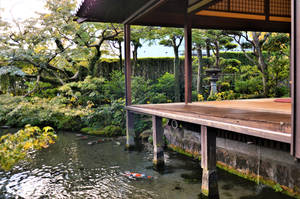 A garden with large pond by Furuhashi335
