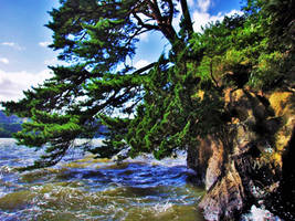 Matsushima at sea level