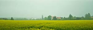 Misty spring field in Germany by Furuhashi335