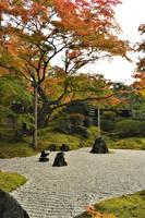 Karesansui in Entsuin 1 by Furuhashi335