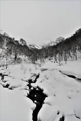 Snowy creek by Furuhashi335