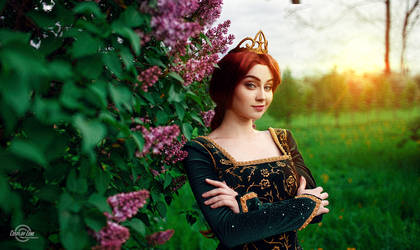 Princesse Fiona by demon00700