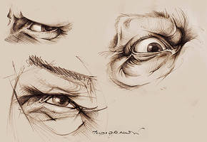 eye studies by alenah511