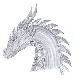 a pic for my Dragon