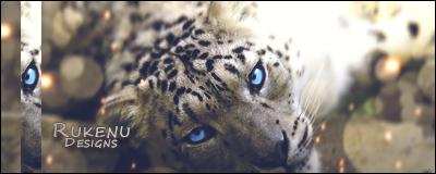 Leopardo by Rukenu