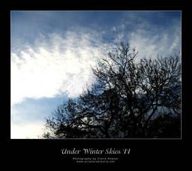 Under Winter Skies II by saecula