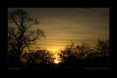 Winter's Sun II by saecula