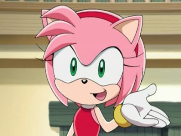 Cutegirlmayra so amy what 39 s your favorite meal to cook - Amy rose sonic x ...