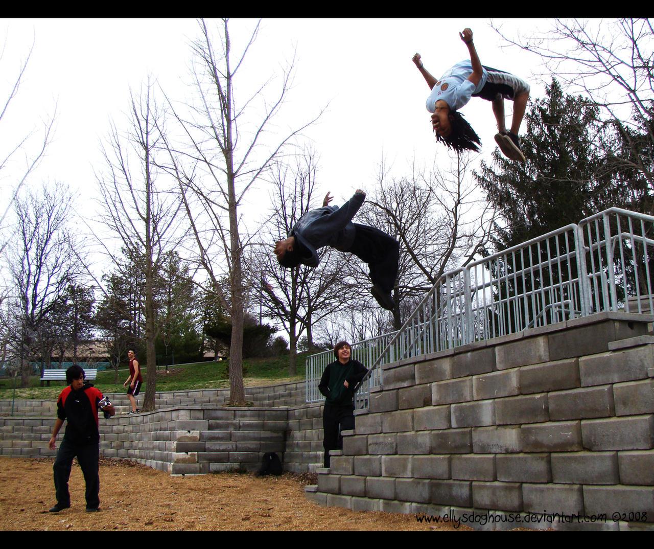 TRICKset's Day at the Park by ellysdoghouse