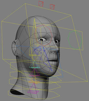 Head and Eye Rig