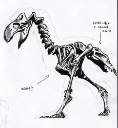 Diatryma study (aka Gastornis) by Insalival