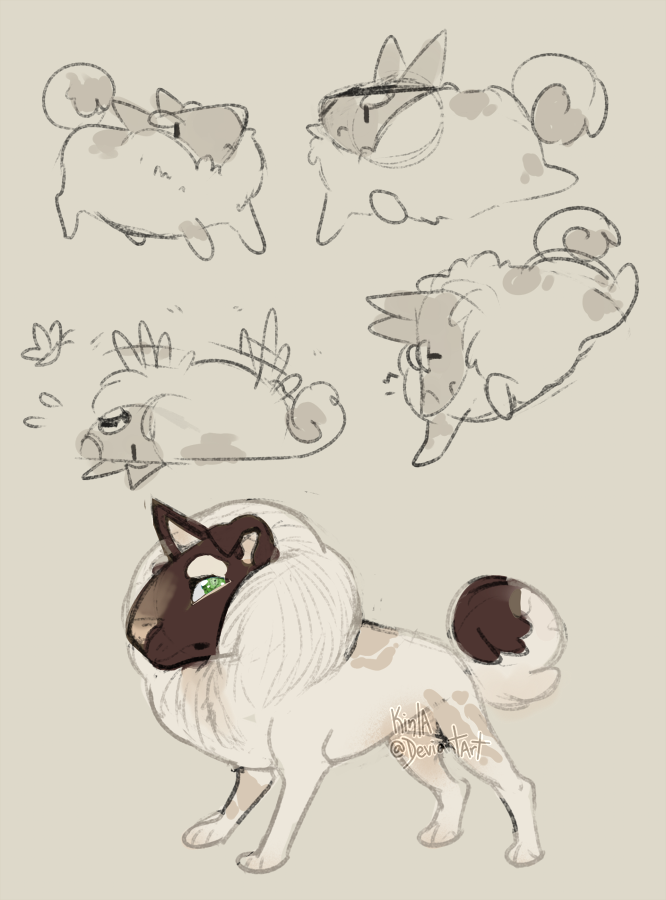 Cotton Pup by Kinla