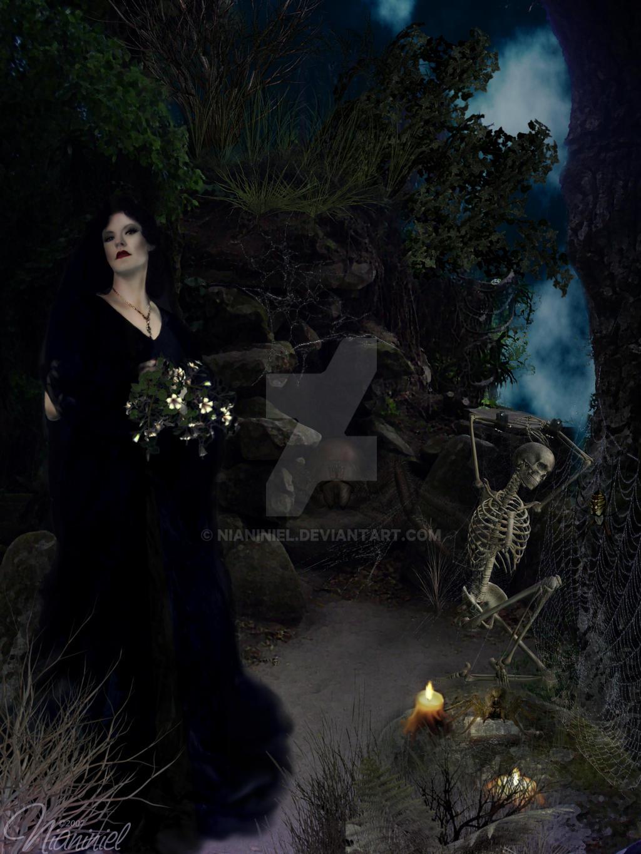 Black Widow by nianiniel