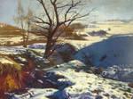 Winter scenery 3