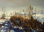 Winter scenery 4