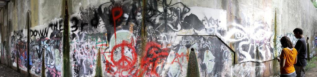 Art- Not Vandalism by SkulkiMAGES