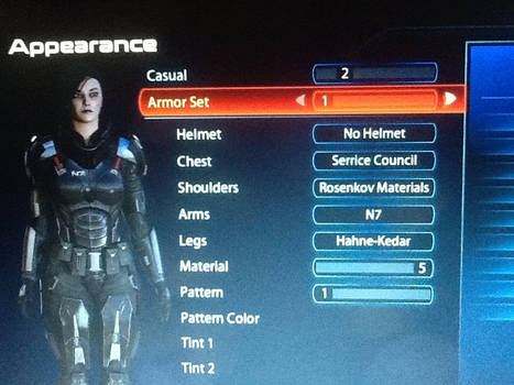 Kaerie's armor