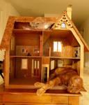 dodger's dolly house