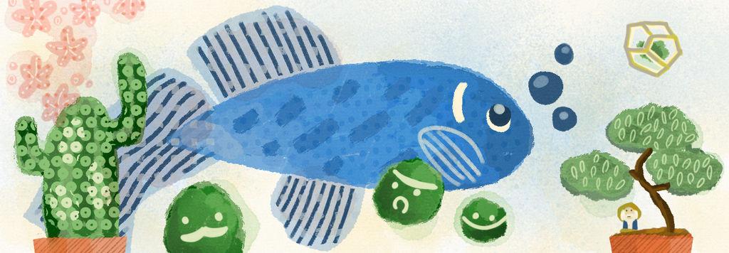 Tayasui Fish