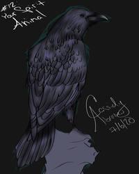 12. Your Spirit Animal