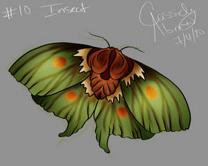 10. Insect