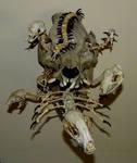Infested  by Forgotten Boneyard (Tim Prince)