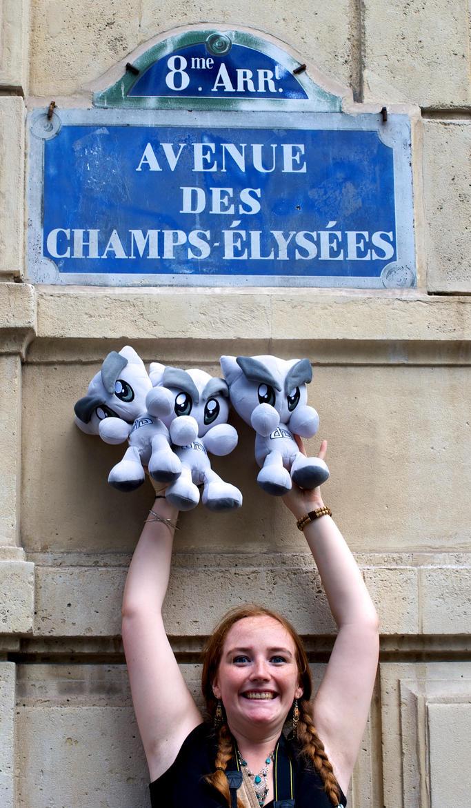 Birthday parisian devMeet 9 by ZeldaDreams