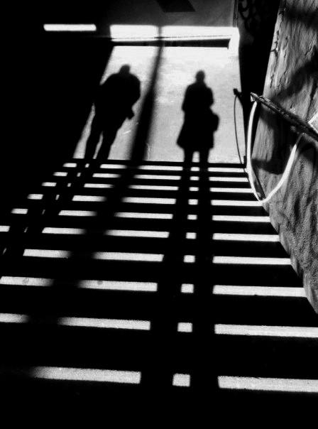 shadows by soleus