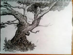 Treeeeeeee