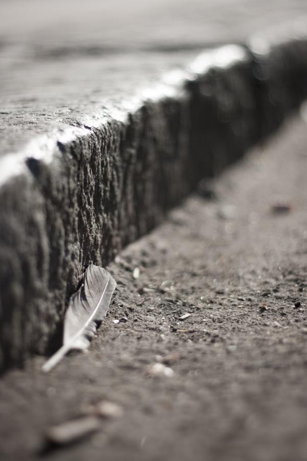 Ia-te de pe jos by yosh-dewd