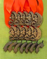 Animecon X medals and pins by xFwankiex