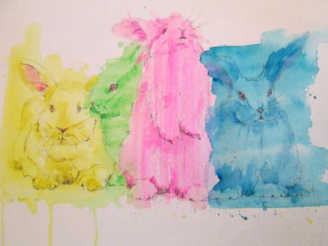 Happy Easter Bunnies!