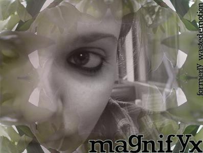 magnifyx id by magnifyx