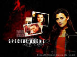 Special Agent Ziva David