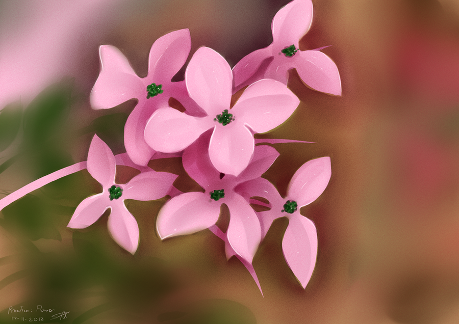 Practice- Flower by Prafa-AR