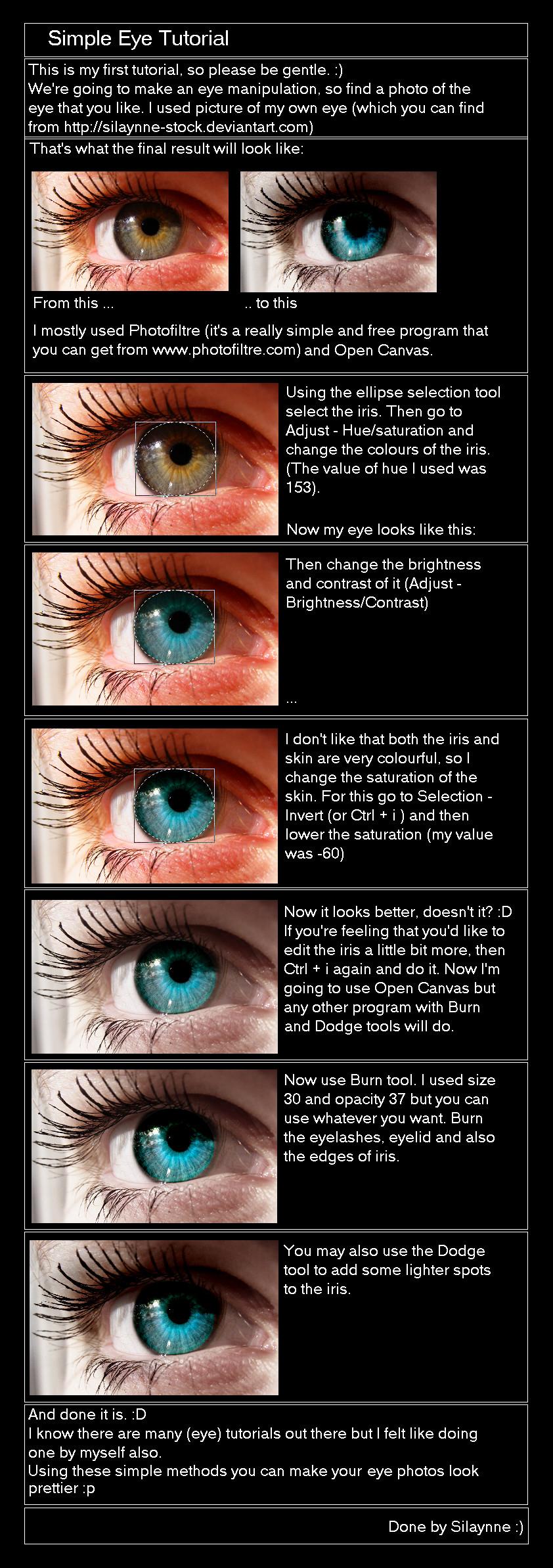 Eye Tutorial_READ DESCRIPTION by Silaynne