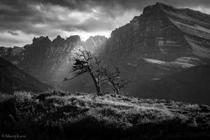 Last Rays by MaciejKarcz