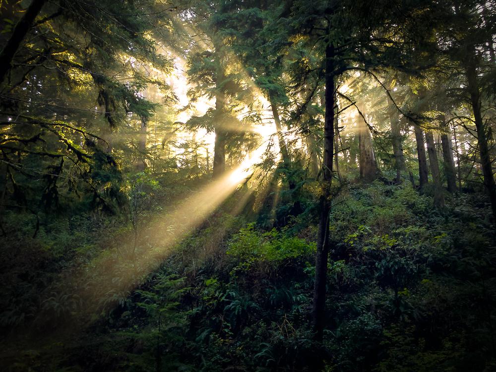 Oregon Coast by MaciejKarcz