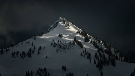 The Wind That Shakes the Mountain