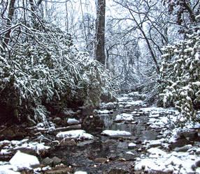 Creek HDR