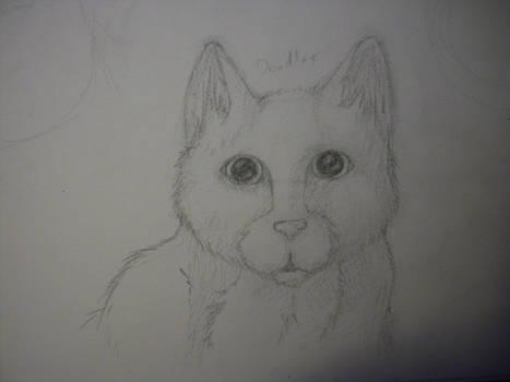 Doodles WIP