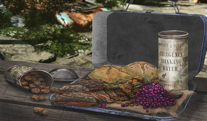 Fallout Foods: Kanin's Lunchbox
