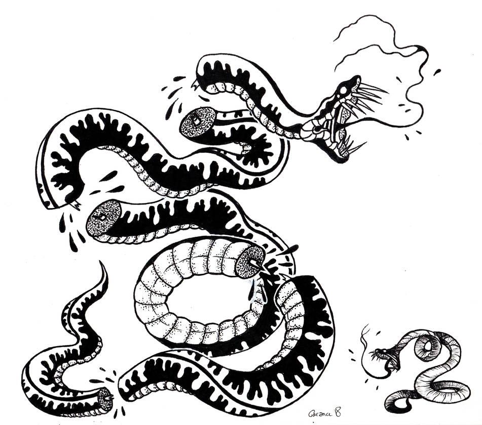 Divided Snake by Garance-Croville