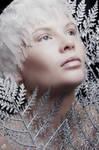 Amber Rae - Winter Beauty II