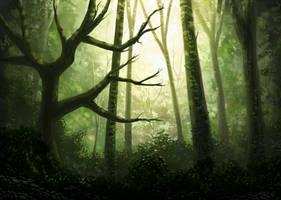 Noon Woods