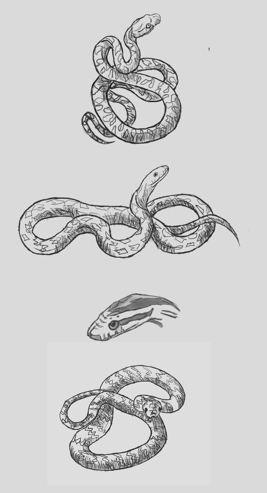 One for the homies @strongholdtattoo | Animal tattoo ... |Snake Tattoo Sketches