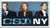 CSI NY by phantom