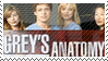 Grey's Anatomy by phantom