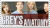 Grey's Anatomy by phantom